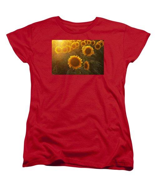 Late Afternoon Golden Glow Women's T-Shirt (Standard Cut) by Karen McKenzie McAdoo