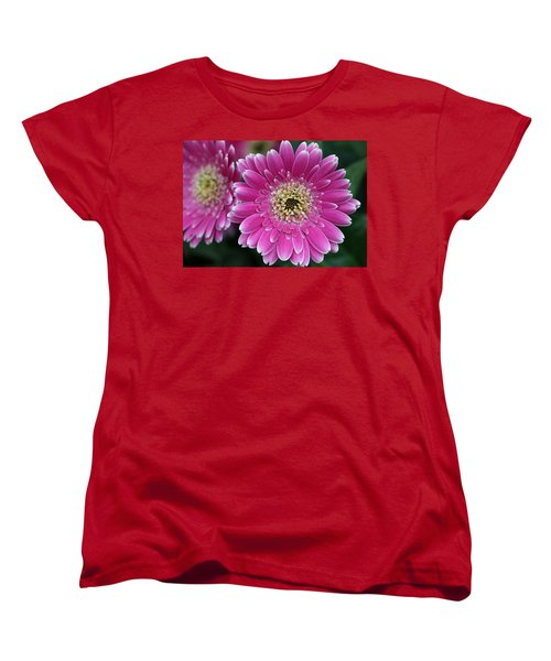 Layers Of Spring Women's T-Shirt (Standard Cut) by Pamela Critchlow