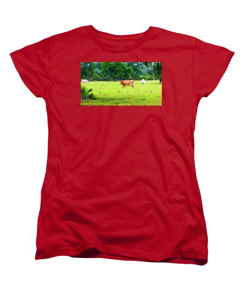 Lazy Afternoon In The Life Of A Cow Women's T-Shirt (Standard Cut)
