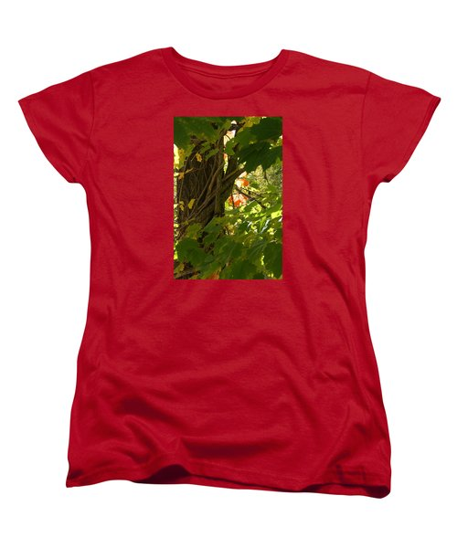 Leaf Peeping In Red Women's T-Shirt (Standard Cut) by Margie Avellino