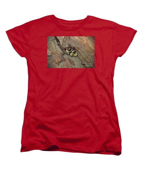 Little Rocks Women's T-Shirt (Standard Cut) by Cendrine Marrouat