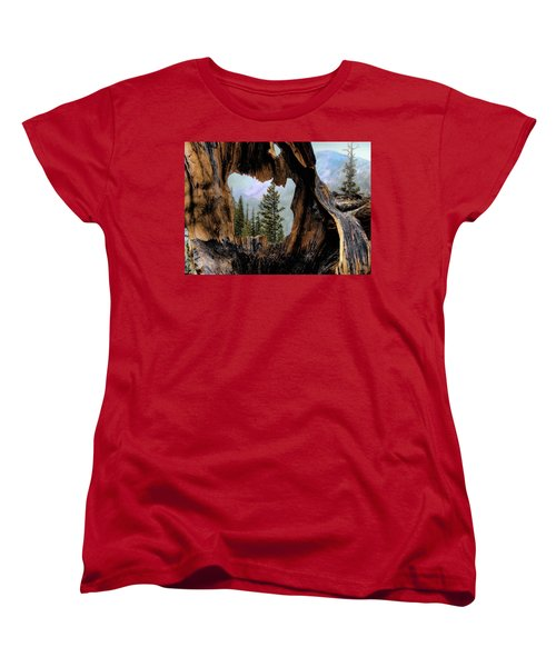 Women's T-Shirt (Standard Cut) featuring the photograph Look Into The Heart by Jim Hill