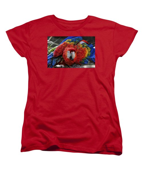 Macaw Parrot Women's T-Shirt (Standard Cut) by Mitch Shindelbower