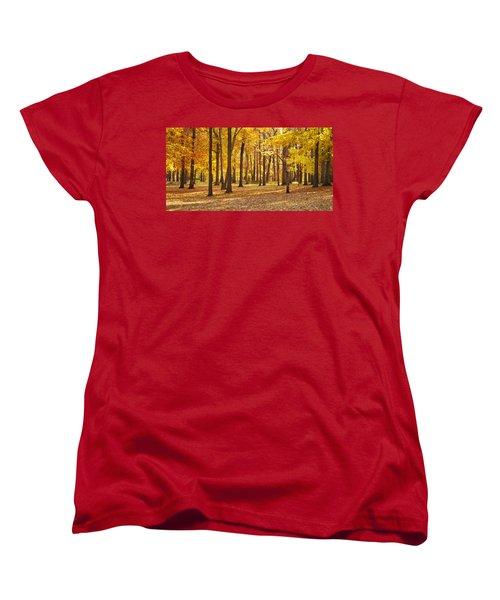 Maple Glory Women's T-Shirt (Standard Cut) by Francesa Miller
