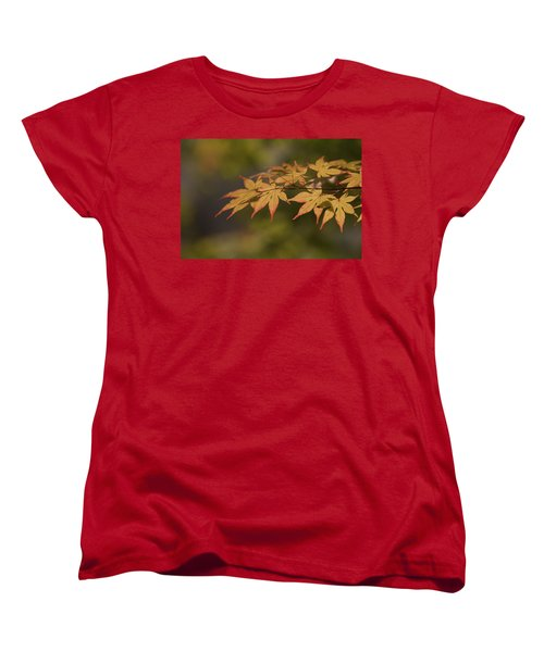 Maple Women's T-Shirt (Standard Cut) by Hyuntae Kim