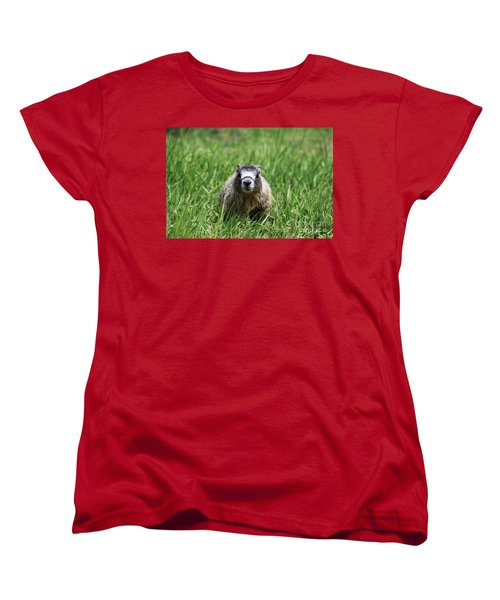 Women's T-Shirt (Standard Cut) featuring the photograph Marmot Pup by Alyce Taylor