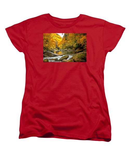 Mcconnell's Mill State Park Women's T-Shirt (Standard Cut) by Skip Tribby