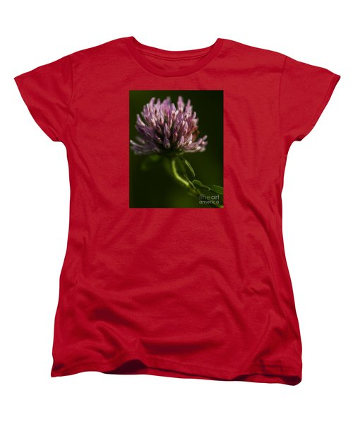 Meadow Clover Women's T-Shirt (Standard Cut) by JT Lewis