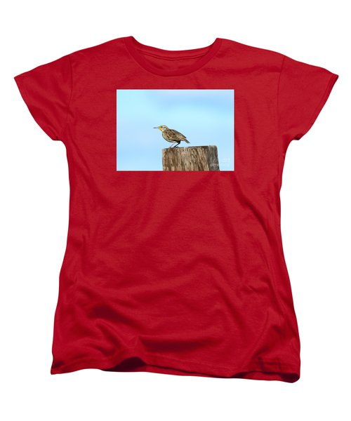 Meadowlark Roost Women's T-Shirt (Standard Cut) by Mike Dawson