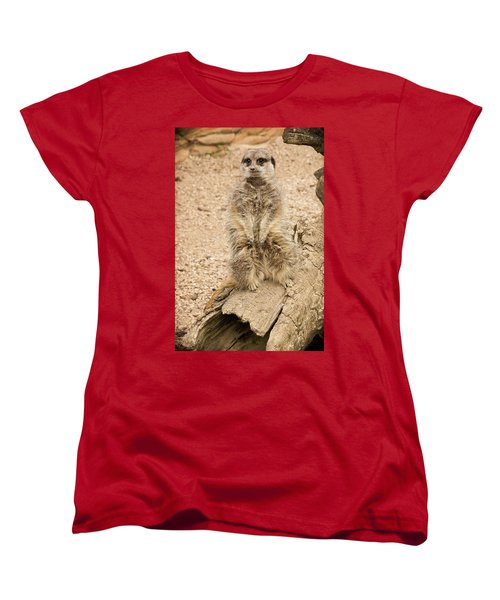 Women's T-Shirt (Standard Cut) featuring the photograph Meerkat by Chris Boulton