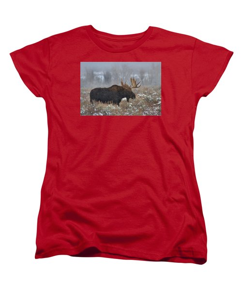Women's T-Shirt (Standard Cut) featuring the photograph Moose In The Fog by Adam Jewell