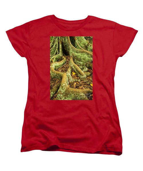 Women's T-Shirt (Standard Cut) featuring the photograph Moreton Bay Fig by Werner Padarin