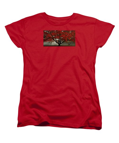 Women's T-Shirt (Standard Cut) featuring the photograph Morning Rays In The Forest by Ken Smith