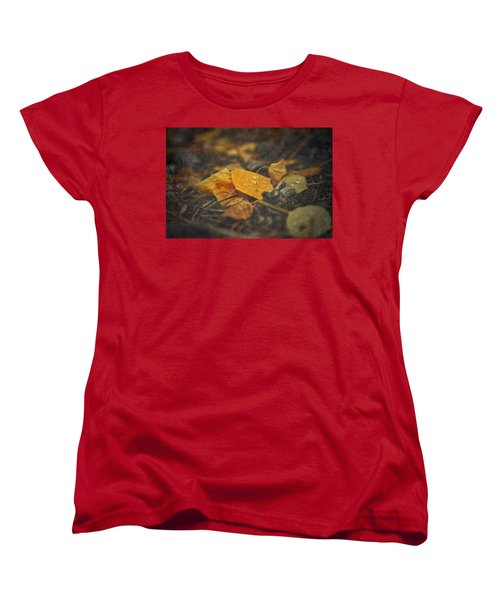 Women's T-Shirt (Standard Cut) featuring the photograph Mountain Months  by Mark Ross