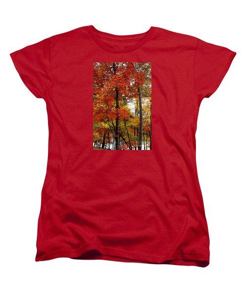Multi-colored Leaves Women's T-Shirt (Standard Cut)