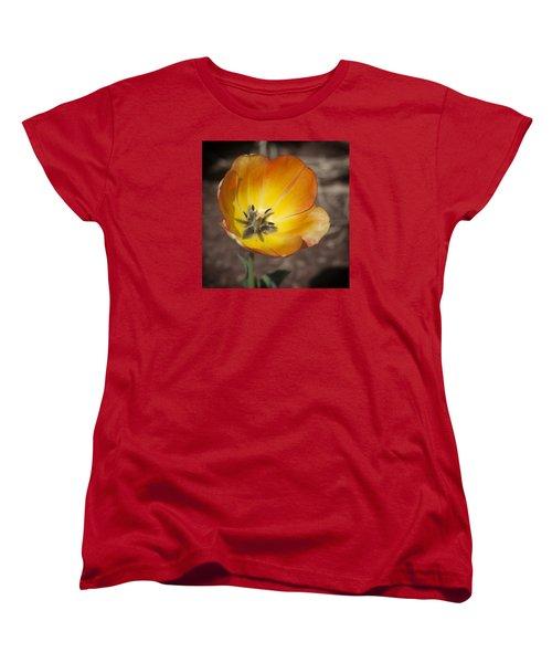 Multihued Women's T-Shirt (Standard Cut) by Morris  McClung