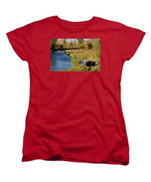 National Bison Range Women's T-Shirt (Standard Cut) by Cindy Murphy - NightVisions