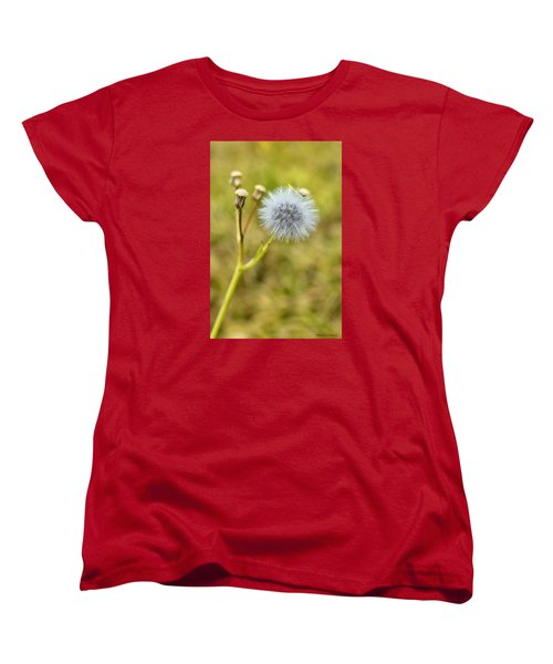 Women's T-Shirt (Standard Cut) featuring the photograph Natures Beauty 00001 by Kevin Chippindall