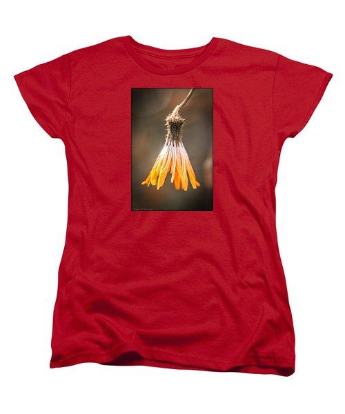 Near The End Women's T-Shirt (Standard Cut)