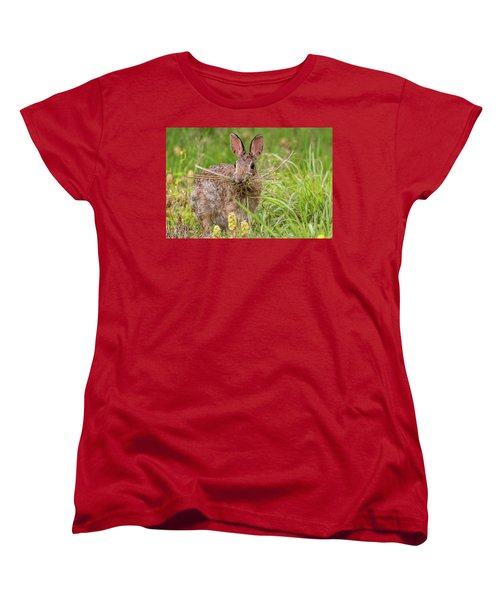 Nesting Rabbit Women's T-Shirt (Standard Cut) by Terry DeLuco