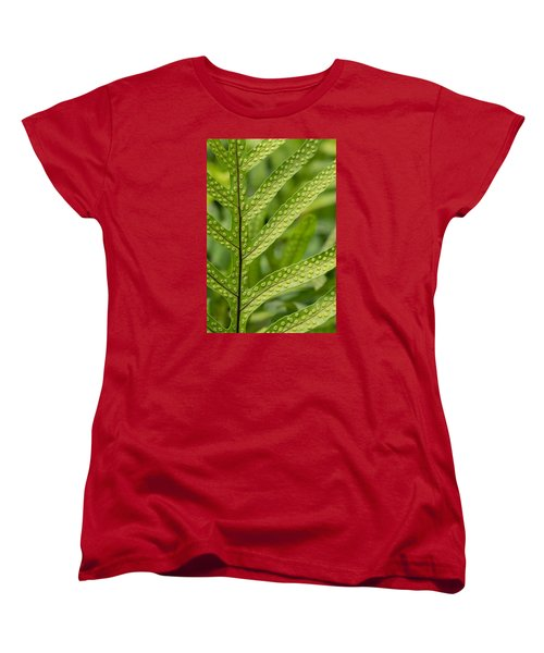 Oh Fern Women's T-Shirt (Standard Cut) by Christina Lihani
