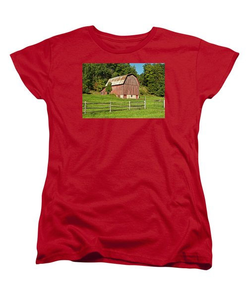 Old Red_9374 Women's T-Shirt (Standard Cut) by Michael Peychich