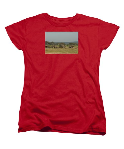 Women's T-Shirt (Standard Cut) featuring the photograph On The Move by Gary Hall
