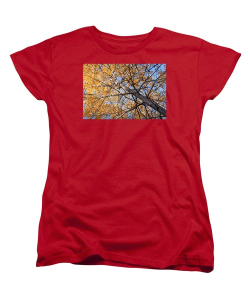 Orange Autumn Tree. Women's T-Shirt (Standard Cut) by Teemu Tretjakov