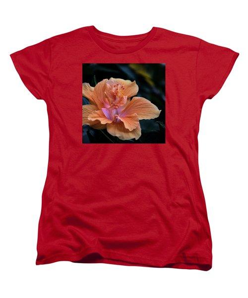 Orangecicle Women's T-Shirt (Standard Cut) by Robert McCubbin
