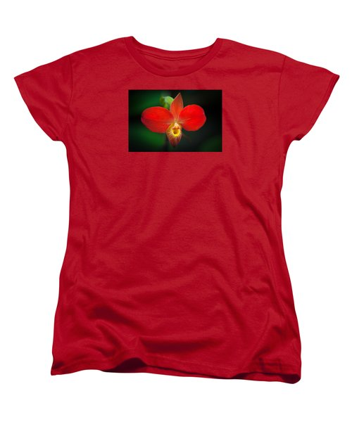 Orchard  Women's T-Shirt (Standard Cut) by Catherine Lau