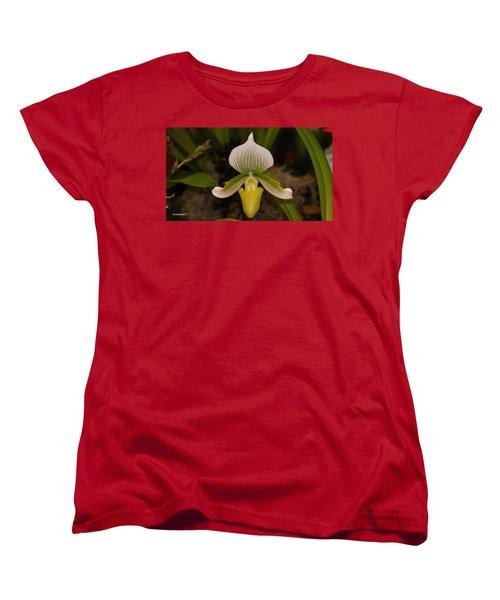 Orchid Flower 42 Women's T-Shirt (Standard Cut) by Gary Crockett
