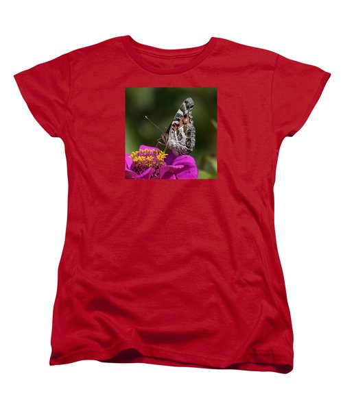 Painted Lady Women's T-Shirt (Standard Cut) by David Lester