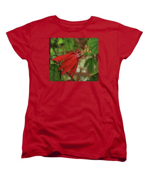 Passion Women's T-Shirt (Standard Cut) by Marna Edwards Flavell