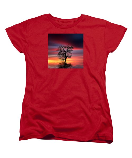 Pear On Lake Women's T-Shirt (Standard Cut) by Bess Hamiti