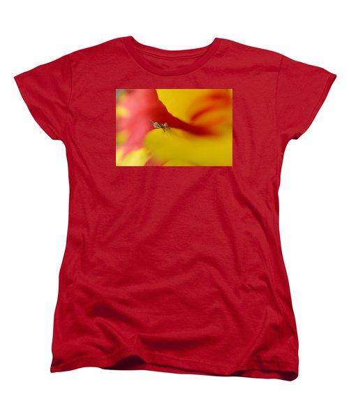 Peeking Women's T-Shirt (Standard Cut) by Janet Rockburn