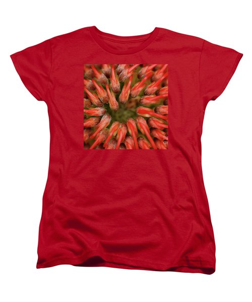 Women's T-Shirt (Standard Cut) featuring the photograph Perseverance by Stephen Mitchell