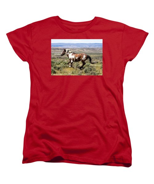 Picasso - Free As The Wind Women's T-Shirt (Standard Cut) by Nadja Rider