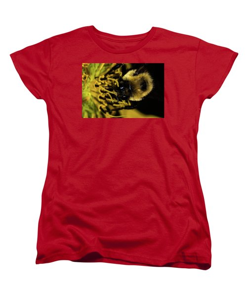 Women's T-Shirt (Standard Cut) featuring the photograph Pollen Collector 2 by Jay Stockhaus