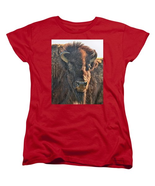 Portrait Of A Buffalo Women's T-Shirt (Standard Cut) by Nancy Landry