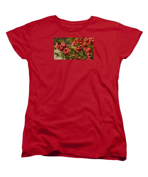 Pretty In Red Women's T-Shirt (Standard Cut) by Cameron Wood