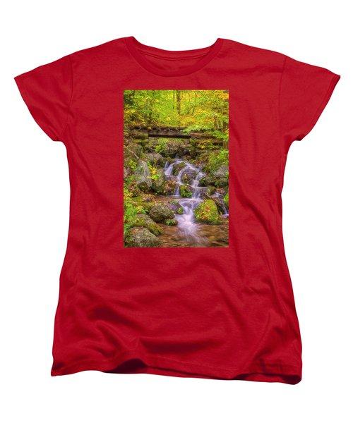 Railroad In The Woods Women's T-Shirt (Standard Cut) by David Cote