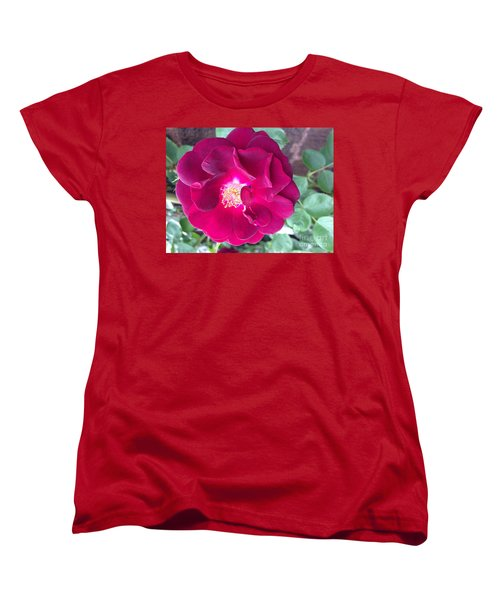 Rambling Rose Women's T-Shirt (Standard Cut)