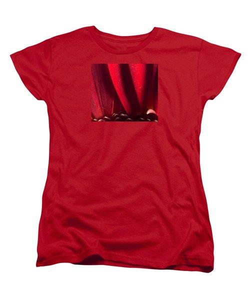 Golden Pollen Red Chrysanthemum Women's T-Shirt (Standard Cut) by John Williams