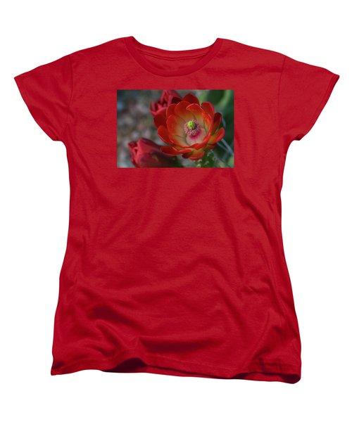 Women's T-Shirt (Standard Cut) featuring the photograph Red Beauty  by Saija Lehtonen