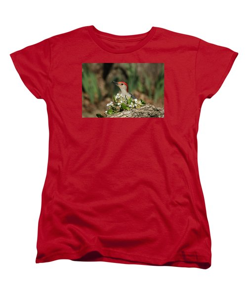 Red-bellied Woodpecker In Spring Women's T-Shirt (Standard Cut) by Sheila Brown