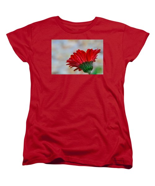 Red Daisy  Women's T-Shirt (Standard Cut) by John Harding