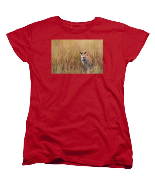 Women's T-Shirt (Standard Cut) featuring the photograph Red Fox Hunting  by Kelly Marquardt