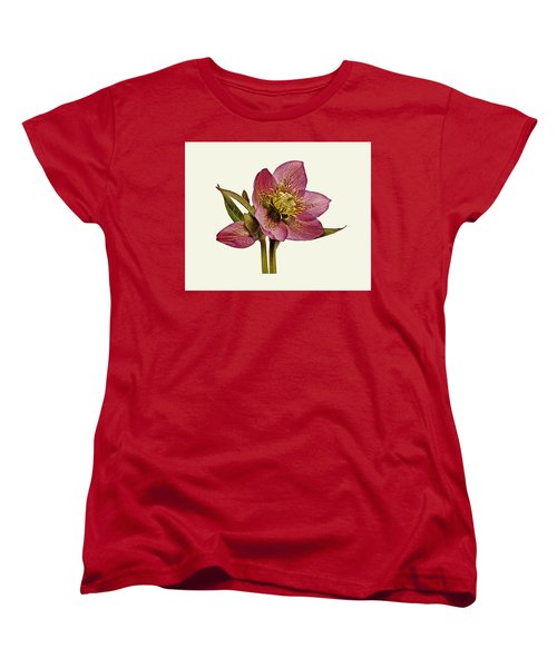 Women's T-Shirt (Standard Cut) featuring the photograph Red Hellebore Cream Background by Paul Gulliver