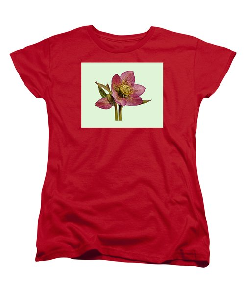 Red Hellebore Green Background Women's T-Shirt (Standard Cut) by Paul Gulliver