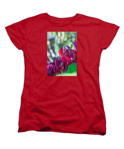 Red Leaves - 9592 Women's T-Shirt (Standard Cut) by G L Sarti